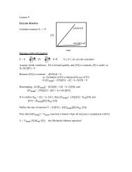Lecture 10/16--Enzyme kinetics
