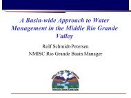 A Basin-wide Approach to Water Management in the Middle Rio ...