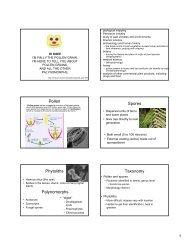 Pollen Spores Phytoliths Palynomorphs Taxonomy