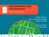 Small and Medium Scale Forest Enterprises - Rights and Resources ...