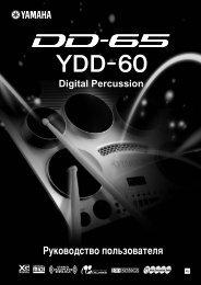 DD-65/YDD-60 Руководство пользователя