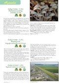 rAntGroen 44 - Welkom op de site van Natuurpunt-afdeling Zuidrand - Page 6