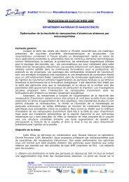 PROPOSITION DE SUJET DE THESE 2009 ... - IM2NP