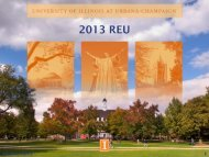 2013 REU - University of Illinois High Energy Physics