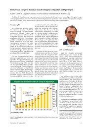 Erneuerbare Energien: Biomasse braucht dringend Leitplanken und ...