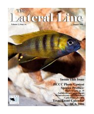 Lateral Line August 2006.pub - Hill Country Cichlid Club