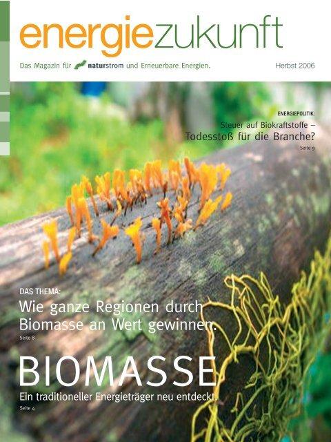 Wie ganze Regionen durch Biomasse an Wert gewinnen. - Naturstrom