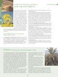 Wie ganze Regionen durch Biomasse an Wert gewinnen. - Naturstrom - Page 7