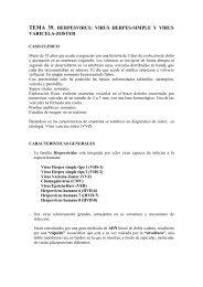TEMA 39. HERPESVIRUS: VIRUS HERPES-SIMPLE ... - micromadrid