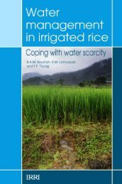 Water management in irrigated rice - Rice Knowledge Bank ...
