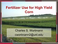 Fertilizer Use for High Yield Corn