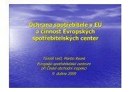 pdf (243 kB) - Euroskop.cz