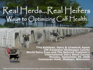 Real Herds…Real Heifers - University of Wisconsin-Extension