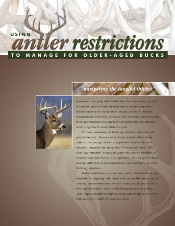Using Antler Restrictions to Manage for Older-aged Bucks