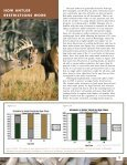 Using Antler Restrictions to Manage for Older-aged Bucks - Page 3