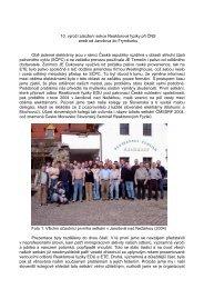 10. výročí založení sekce Reaktorové fyziky při ČNS aneb od ...