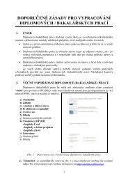 doporučené zásady pro vypracování diplomových / bakalářských prací