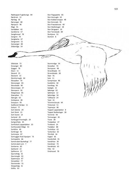 Fugle i Østjylland 2007 - DOF Østjylland