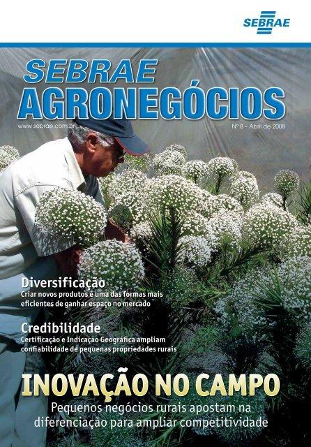 Revista Sebrae Agronegócios : inovação no campo