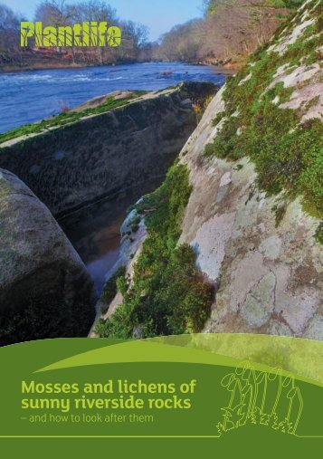 Mosses and lichens of sunny riverside rocks - Plantlife