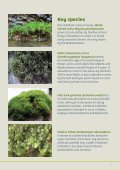 Mosses and lichens of sunny riverside rocks - Plantlife - Page 3