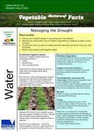 No. 41 download pdf 139kb - Vegetable Growers Association of ...