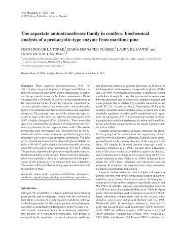 The aspartate aminotransferase family in conifers - Departamento ...