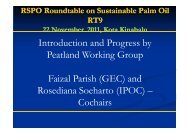 Introduction and Progress by Peatland Working Group ... - RT9 2011