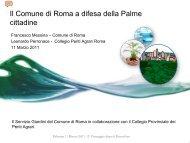 Il Comune di Roma a difesa della Palme cittadine - Clamer Informa
