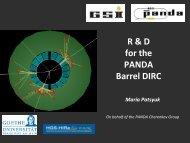 PDF (2.4 MB) - Panda - GSI
