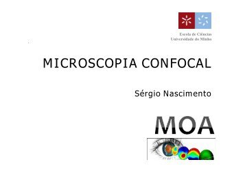 MICROSCOPIA CONFOCAL - Universidade do Minho
