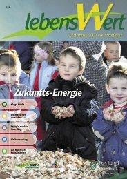 Zukunfts-Energie - Landentwicklung - Steiermark