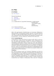 Derma-Net-Online.de (Kap. 2.3.2)