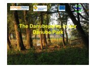 Dunanap-Szabolcs Zavoczky - DANUBEPARKS