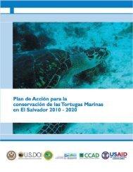 Plan de Acción para la conservación de las Tortugas Marinas en El ...