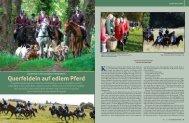 Querfeldein auf edlem Pferd - Mecklenburger Pferde