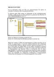 DNA ΚΑΙ ΤΟ ΚΥΤΤΑΡΟ Για να κατανοήσει κανείς την ιδέα ... - EMBL