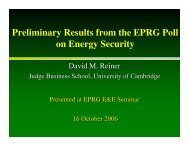 Preliminary Results from the EPRG Poll on Energy - Electricity Policy ...