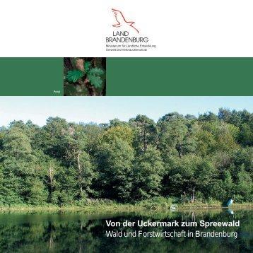 Von der Uckermark zum Spreewald - Landesbetrieb Forst ...