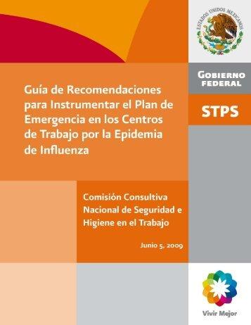 Guía de Recomendaciones para Instrumentar - Secretaría del ...