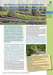 Von Ebrach zu den dicken Schaufelbuchen - Nationalpark Steigerwald