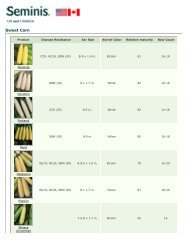 Seminis ~ Products ~ Products ~ Sweet Corn