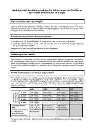 Merkblatt Stipendien für Schüler/innen