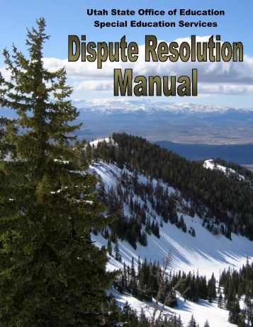 Dispute Resolution Manual - Direction Service