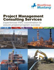 Project Management Consulting Services - Mustang Engineering Inc.