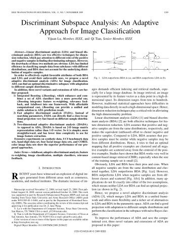 An Adaptive Approach for Image Classification - IEEE Xplore