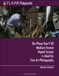 The Phase One P 30 Medium Format Digital System is Ideal for Fine ...