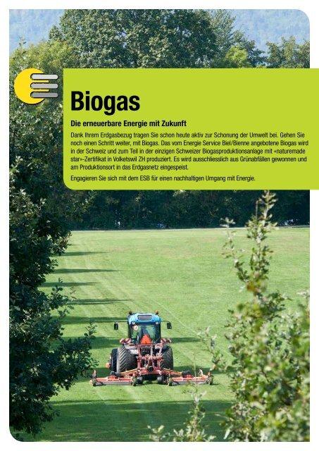 Biogas - ESB