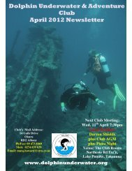 Dolphin Underwater & Adventure Club April 2012 Newsletter