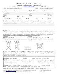 Cash Receipt Report Crr Cashiers University Of Missouri